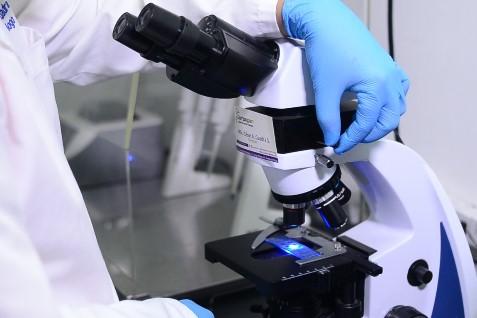 Pruebas clínicas por áreas de laboratorio biologia molecular